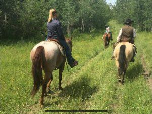 Trail Riding at Bear Creek Cabins