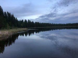 Twin Lakes at night
